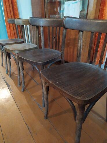 Венские стулья, 10 штук