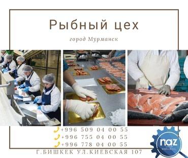 В крупный портовый город  РФ Мурманск  в Бишкек