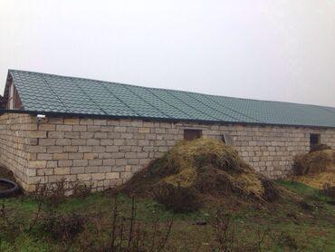 Недвижимость - Ахсу: Ağsu rayonunda ferma cox əlverişli yatırım 900 hektar 110 hektar xüsus