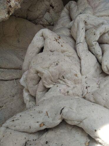 купить протеин бишкек в Кыргызстан: Куплю бу вату чешим делаем реставрацию матрасы одеяло