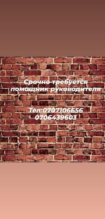 Работа - Кыргызстан: Помощник. С опытом. 5/2