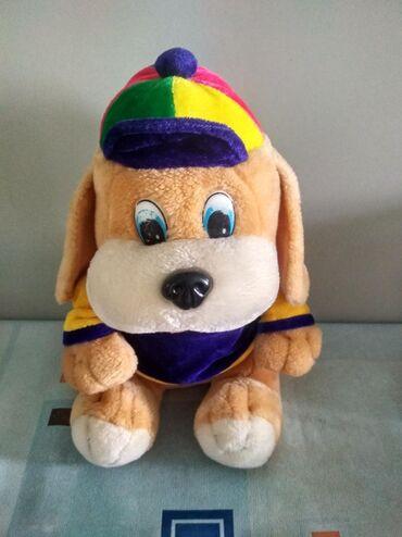 Собачка в кепке
