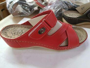 Papuče Novo kožne 36-41
