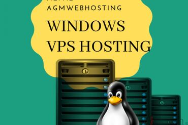 AGM Web Hosting Services best price of Window VPS Domain and hosting.o