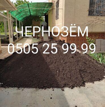 цветы в бишкеке с доставкой в Кыргызстан: Чернозем чернозем черноземЧернозем горный чистый рыхлыйДля газона