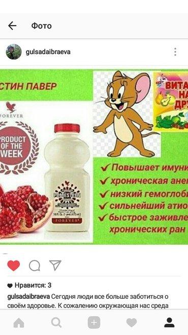 Поместин повер поднимает иммунитет и гемоглобин в Бишкек