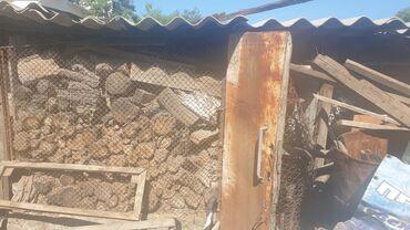 строительные-леса-железные в Кыргызстан: Продаю дрова: сухие плодовые деревья и строительные доски. Село