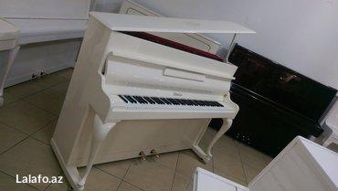 rönisch - Azərbaycan: Rönisch - klassik royal modelli Almaniya istehsalı Akustik və Elektron