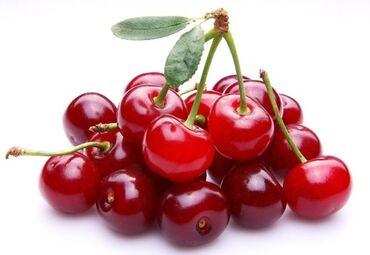 Куплю косточки от вишни (ачуу гилас)