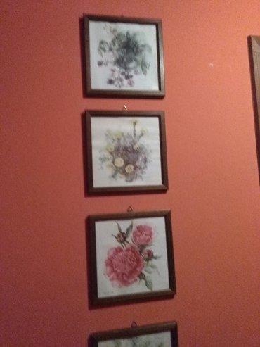 Slike sa drvenim okvirom,lepo izgleda na zidu,pet okvirai slike cveca - Sombor