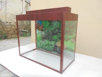 Bakı şəhərində 50 litrelik teze akvarium