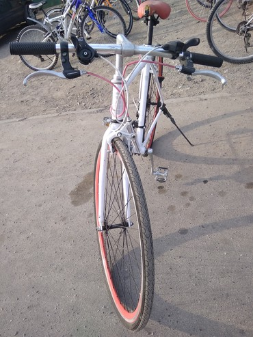 Велосипед Шассеник корейский
