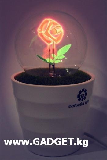 Роза - романтический ночник. Отличная замена цветам. в Бишкек