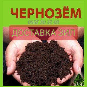 чернозем в Кыргызстан: Горный чернозем, плодотворный, рыхлый, без мусора и сорняков. перегной
