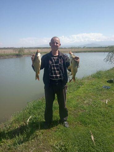 Открылась платная рыбалка в селе Военно Антоновка разрешено поймать 5