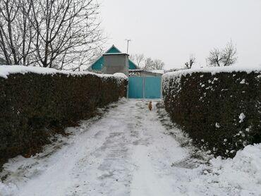 дом на иссык куле купить в Кыргызстан: Продам Дом 100 кв. м, 5 комнат