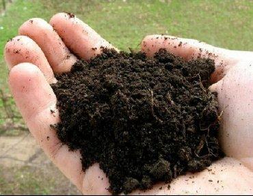 Чернозем чернозем чернозём  Кара топурак топрак  Чернозем горный, рых