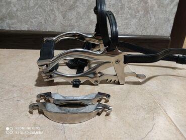 Животные - Кунтуу: Зевник и инструменты для лошади новые.Материал из нержавеющей стали