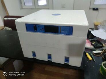 Inkubator inqibator inkibator inqubatorExpert Yeni modelAvtomatik