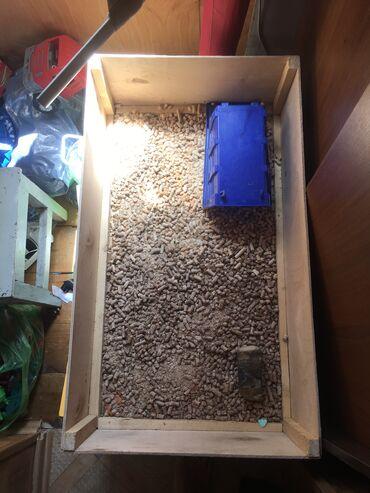 Продаю террариум 80х45 из фанеры  От черепахи