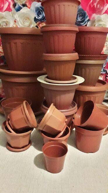 Горшки для растений - Кыргызстан: Горшки для цветов. б/у. состояние хорошее. все чистые. размеры