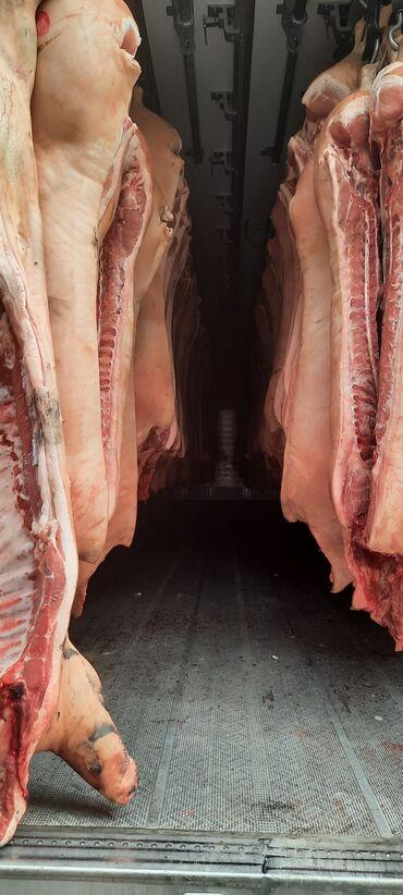 дом на колесах цена бишкек в Кыргызстан: СРОЧНО! Срочно! Срочно!Продаю свинину 2й котегории. Шпиг до 3 см. Все