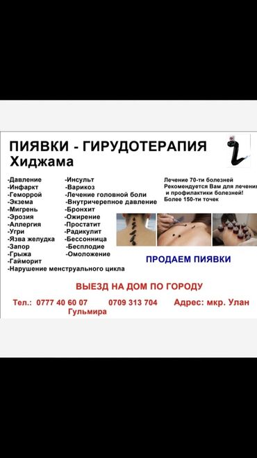 дизайнер бишкек в Кыргызстан: Хиджама Бишкек. Опытный специалист. Пиявки Бишкек . Гульмира