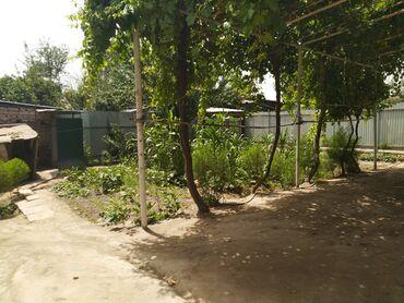 Недвижимость - Таджикистан: 345 кв. м 3 комнаты