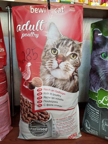 японская порода кошек в Кыргызстан: Корм для кошек, сухойBewi Cat Adult Poultry Тщательно сбалансированное