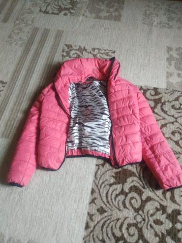 ярко розового цвета в Кыргызстан: Всего за 250 сом цвет ярко розовый практичный