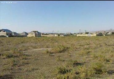 Daşınmaz əmlak Şirvanda: Satış sot