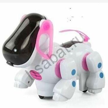 Pas - Srbija: 1250 dinaraOvo je slatki mali pas robot, šeta sam čak i pokušava da