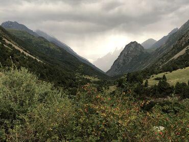 Аренда земельных участков в Бишкек: Аренда 4 соток Строительство от собственника