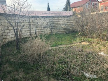 Bakı şəhərində Satış 35 sot