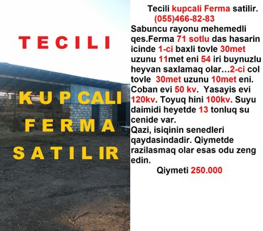 Bakı şəhərində Tecili kupcali ferma satilir. Ferma 71 sotlu das hasarin icinde 1-ci