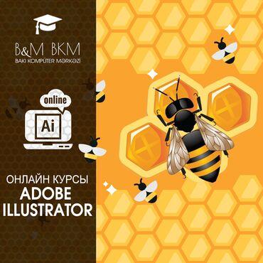 Онлайн курсы Adobe Illustrator- Бакинский Компьютерный Центр приглашае