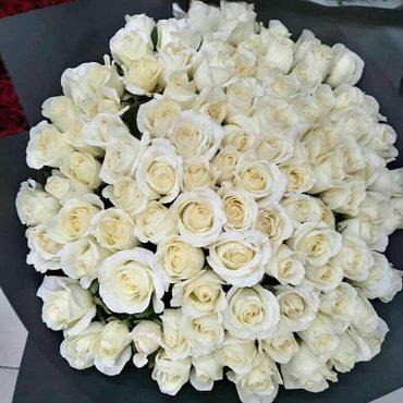 Белые розы 101 штучка в собранном в Бишкек