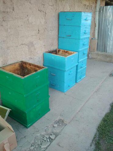 Продаю улей без пчел, рута 13 шт