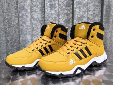 Adidas cipele - Srbija: Adidas AX Krem Boja-Model Za 2018/19-NOVO-41-46-Nepromocive! Adidas po