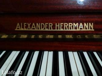 Bakı şəhərində ALEXANDER HERRMANN Pianino alıram tecili