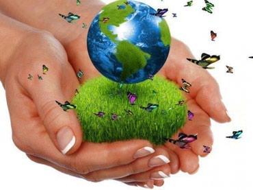 Ищем специалистов по экологическим в Бишкек