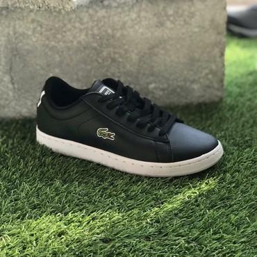 Кроссовки и спортивная обувь - Кок-Ой: Кеды Lacoste с белой подошвой