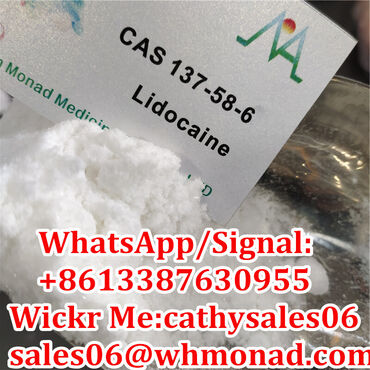 99% Lidocaine Local Anesthetic Powder Lidocaine Base Pain Killer CAS 1