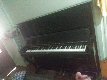 - Azərbaycan: Pianina 130azn unvan sulutepe & sevil