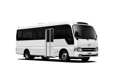 Sərnişin daşımaları - Azərbaycan: Avtobus | 30 oturacaq