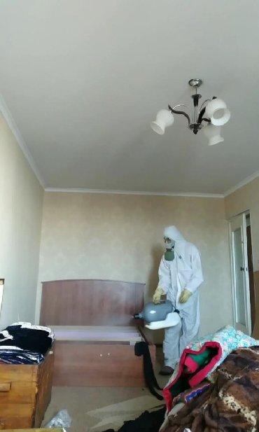 Бытовые услуги в Кыргызстан: Дезинфекция Уничтожения клопов тараканов и других вредителей насекомых