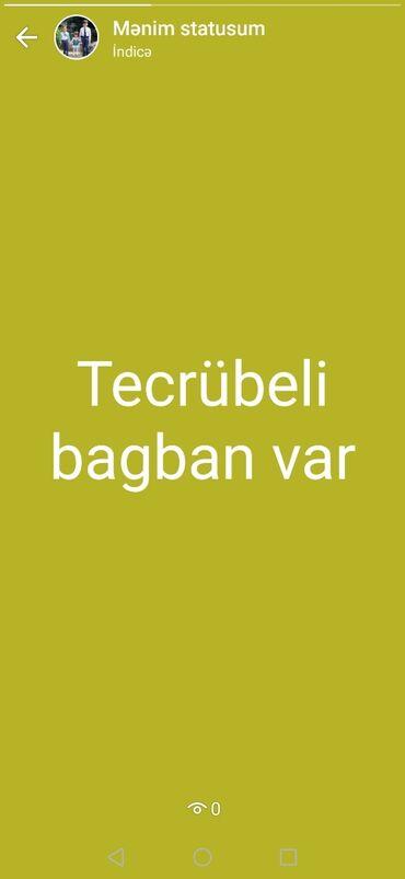 - Azərbaycan: Tecrübeli bagban var