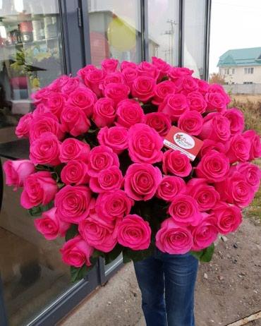 Розы Голландские и Кения 27 сом оптом и в Бишкек