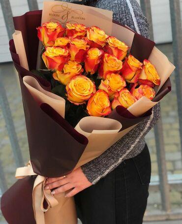 Роза Голландские