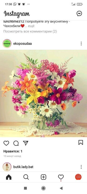 Отдам даром - Кыргызстан: Возму даром цветы или отросток